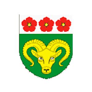 Logo TJ Lokomotiva Meziměstí